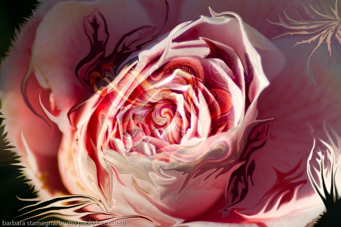 immagine arte moderna astratta con vortice centrale a forma di bocciolo di rosa di colore rosa dominante e forme fluide fluttuanti che richiamano forme della natura