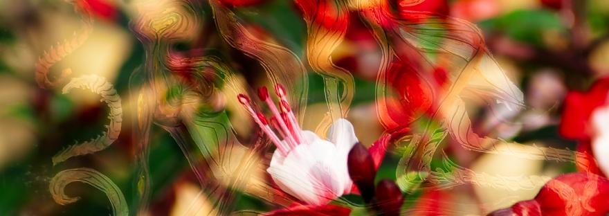immagine di arte astratta simbolica sul mondo spirituale con fiori in primo piano e una figura umana sullo sfondo sfuocato
